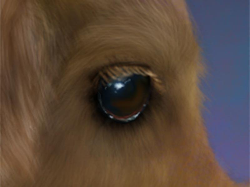 digital_paint_doggie_det2