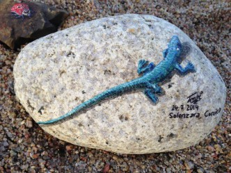 blue lizard close